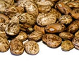 Beans,pinto,dry,50lb