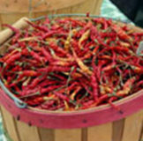Chiles: Dry & Canned